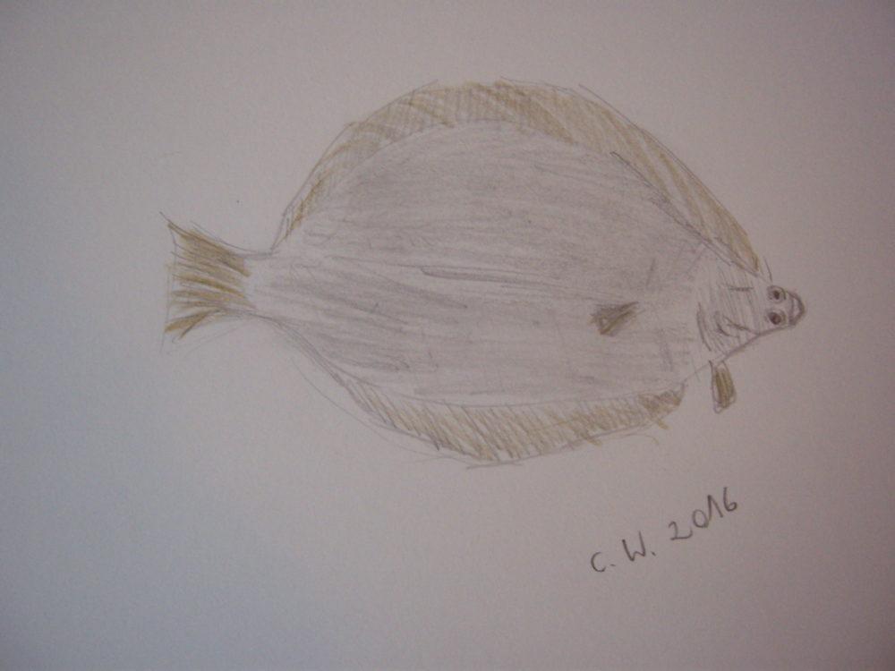 Samstagsfisch